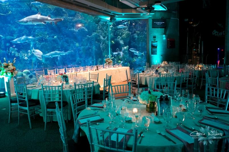 ゲストも体験したことのない印象的な水族館ウェディング